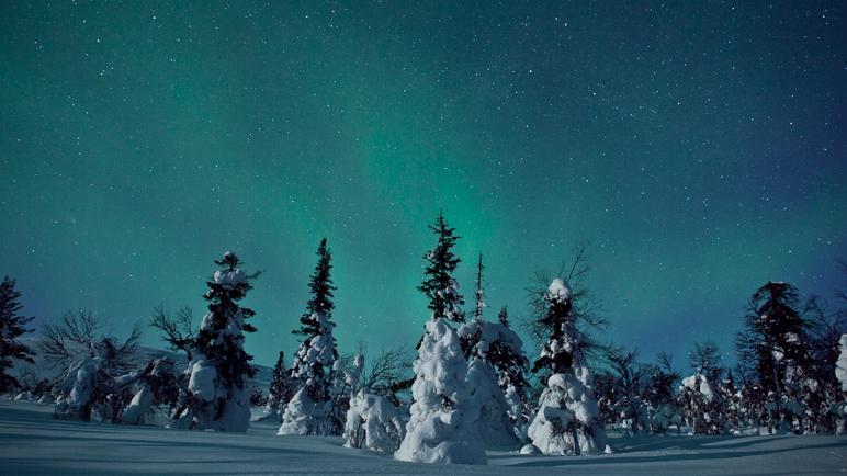 Lapland-w